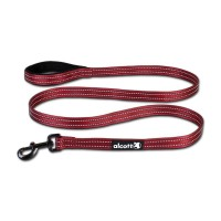LARGE RED ALCOTT ESSENTIAL LEAD