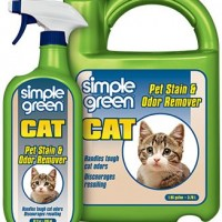 32oz SIMPLE GREEN TRIGGER CAT STAIN & ODOR REMOVER